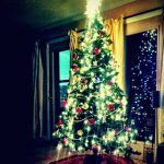 Christmas Tree, Holiday