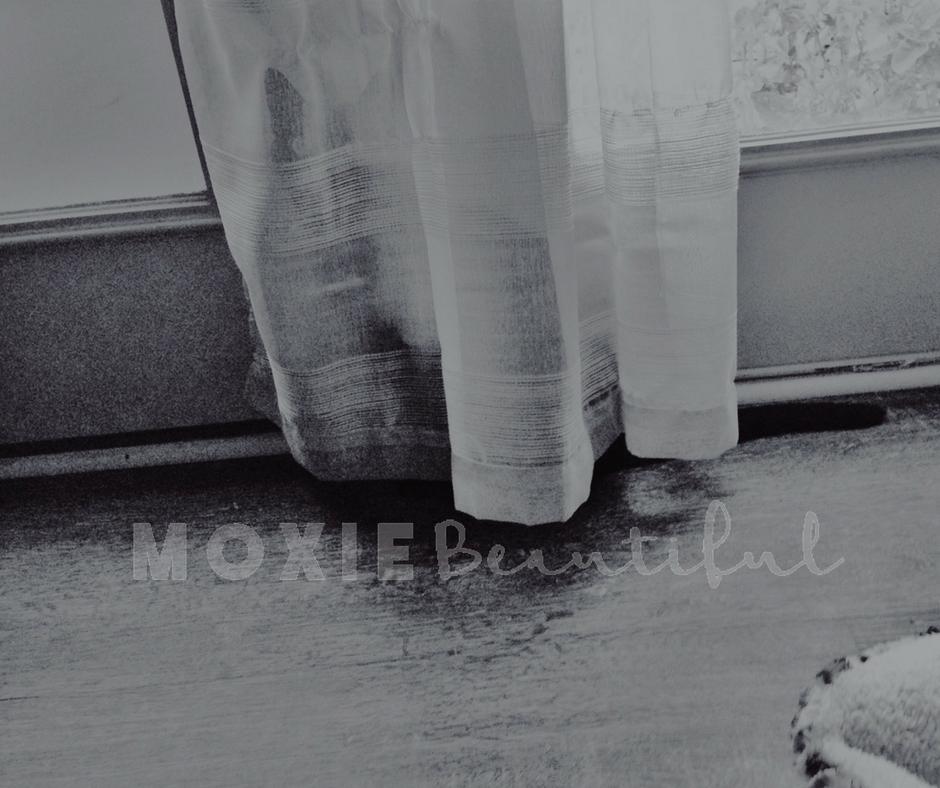 Moxie Shorts 37